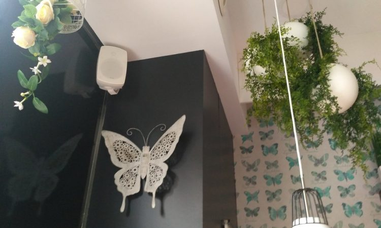 adra360-proyectos-bares-y-restaurantes-the-butterfly-II-4